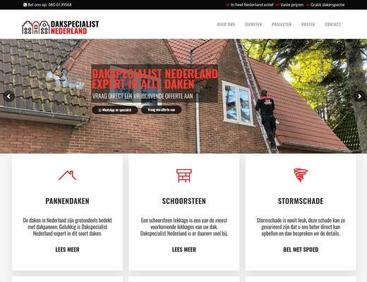 Dakspecialist Nederland